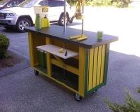 Lemonade-Stand-2